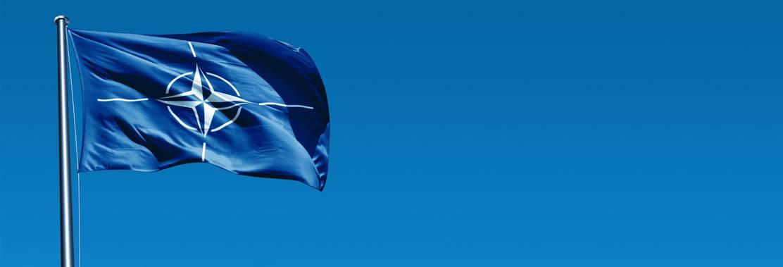 Nationale und Internationale Fahnen und Flaggen von Organisationen